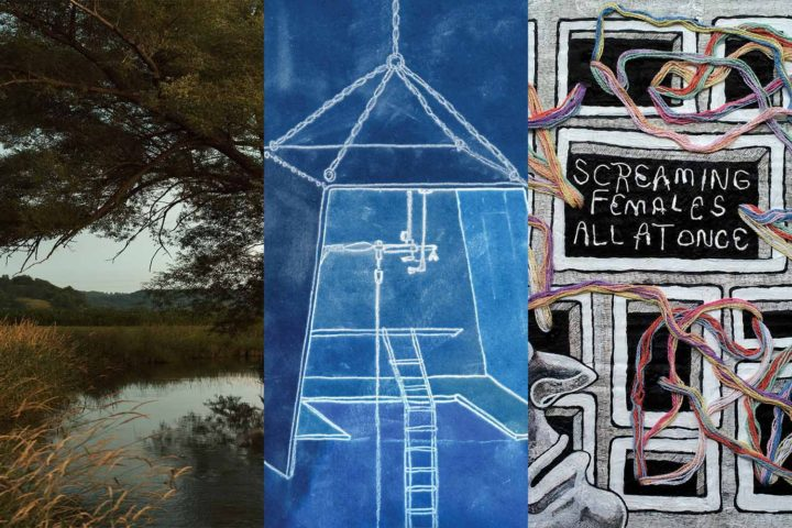 New Music Friday: S. Carey, The Low Anthem, Screaming Females