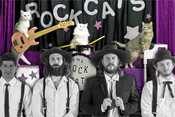 This week in Madison: The Amazing Acro-Cats, The Dead South, and more