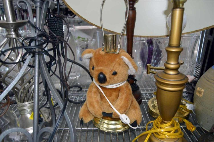 Let's go thrifting: Weird animal stuff galore at northside Goodwill