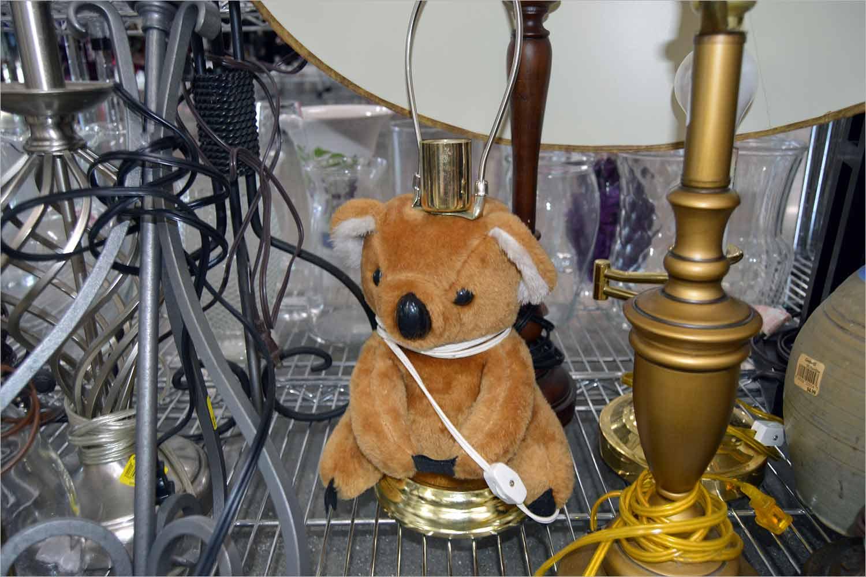 koala lamp