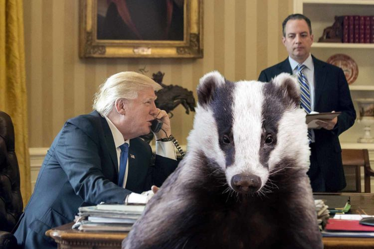 "The president ""Hey Reince Priebus. How do badgers work?"""