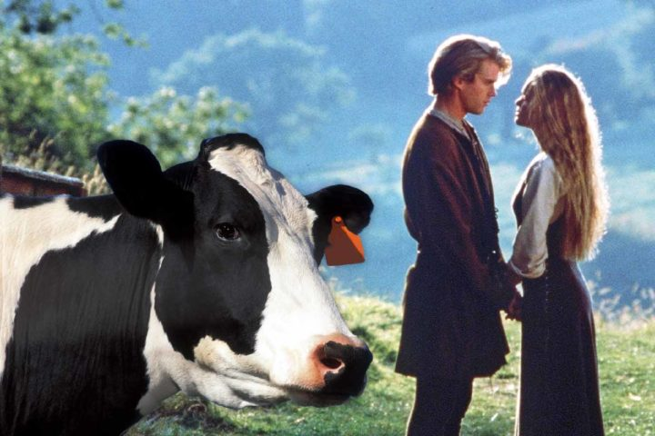 As you wish: The Princess Bride cast will reunite for Wisconsin Dems